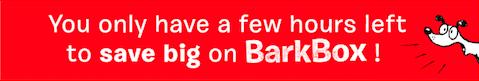 barkbox discount email design header