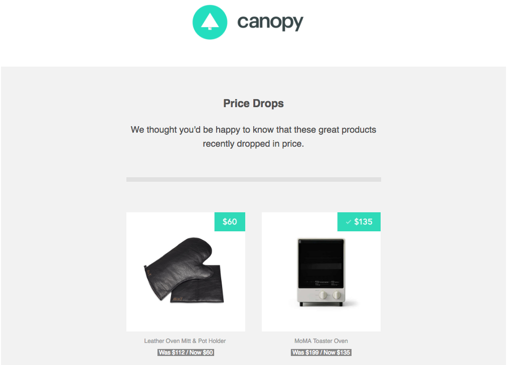 Canopy Amazon curation site email fonts