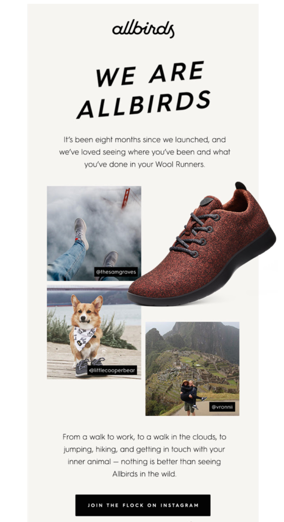 allbirds holiday email design