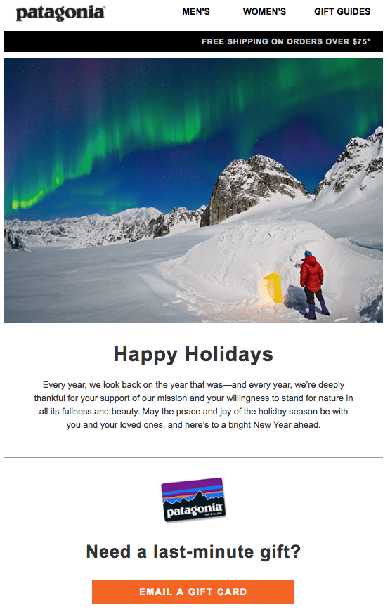 patagonia holiday e-Cards for clients