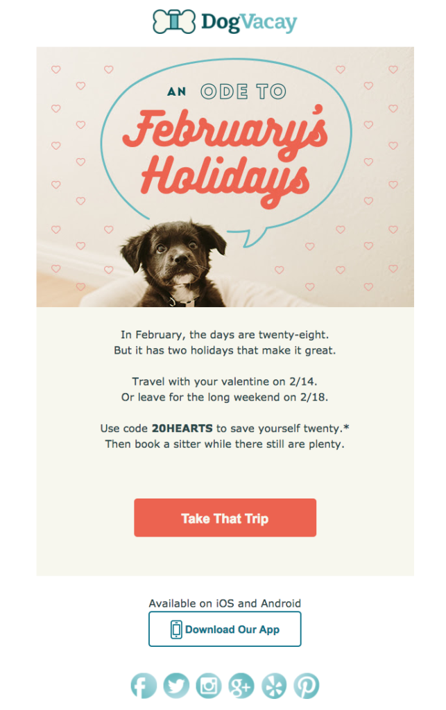 dog vacay pet industry emails