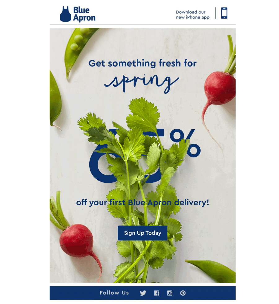Blue Apron food industry email design