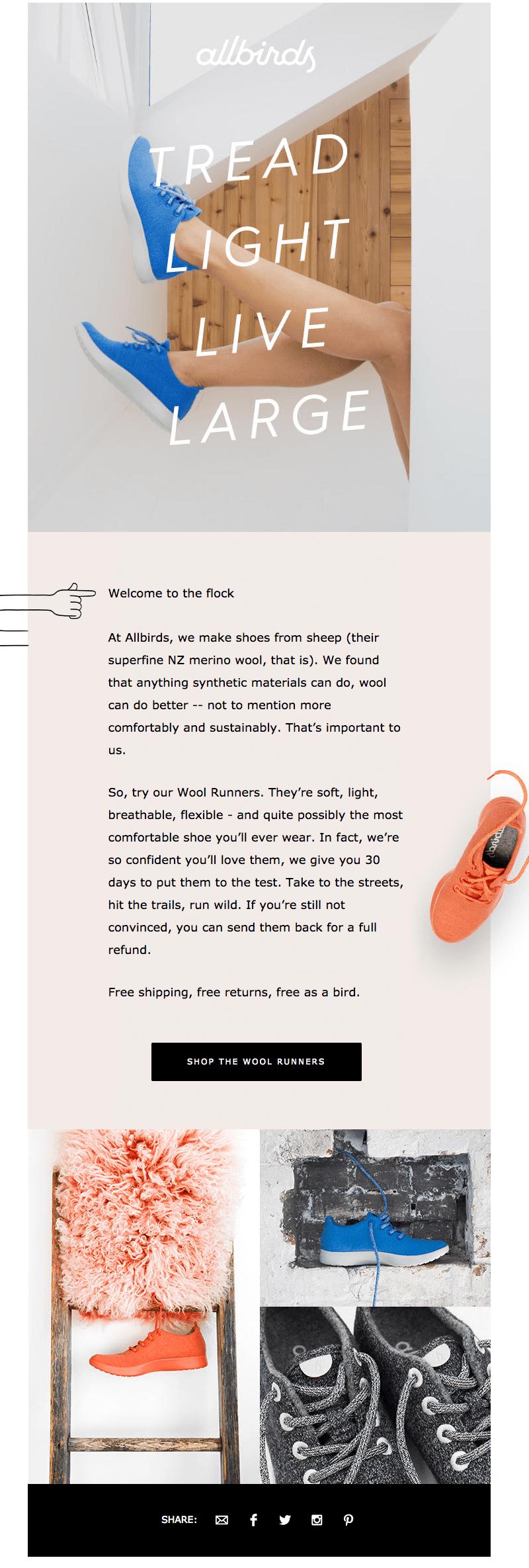 allbirds welcome email design tips