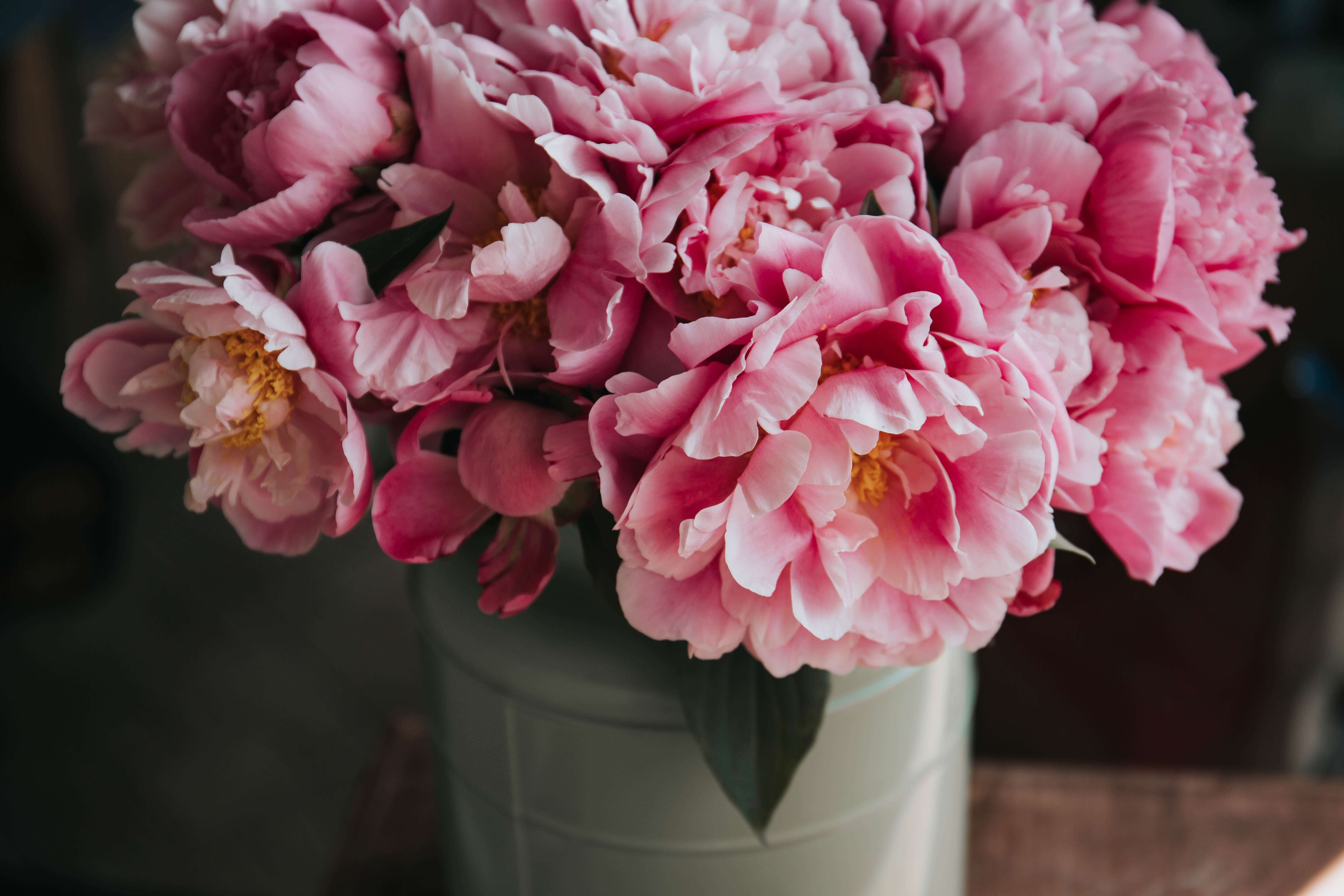peonies Mother's Day emails