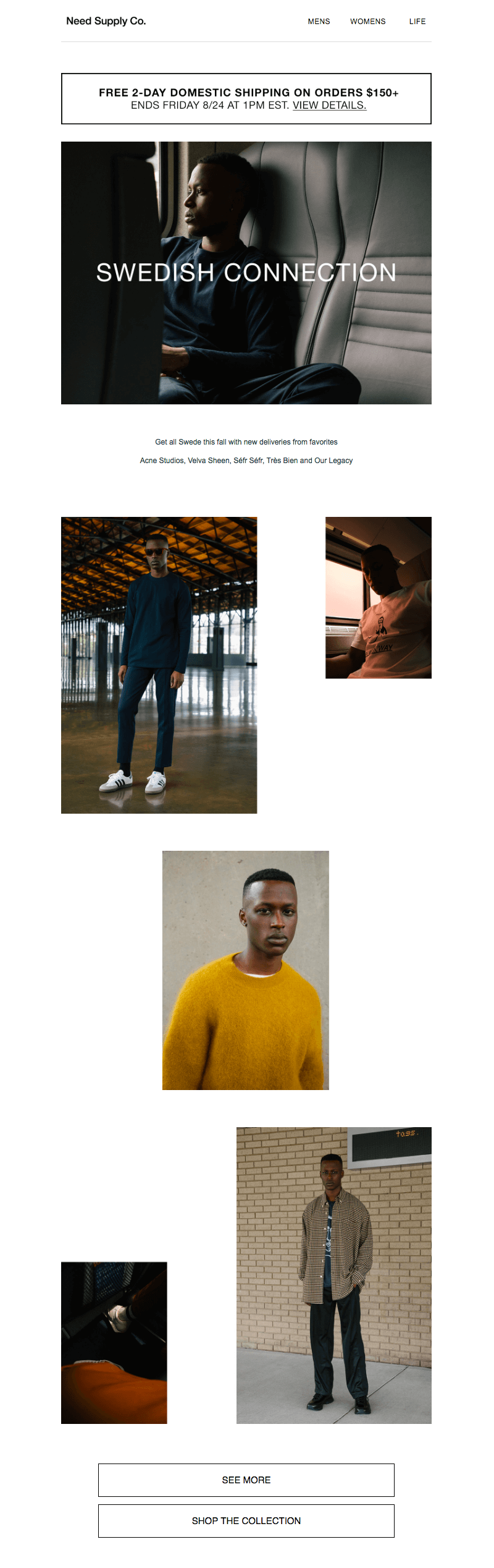 Need Supply Co. fall email campaign