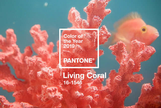 pantone color of the year 2019 email design