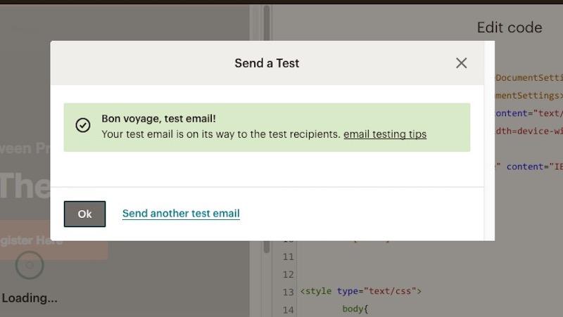 mailchimp test email