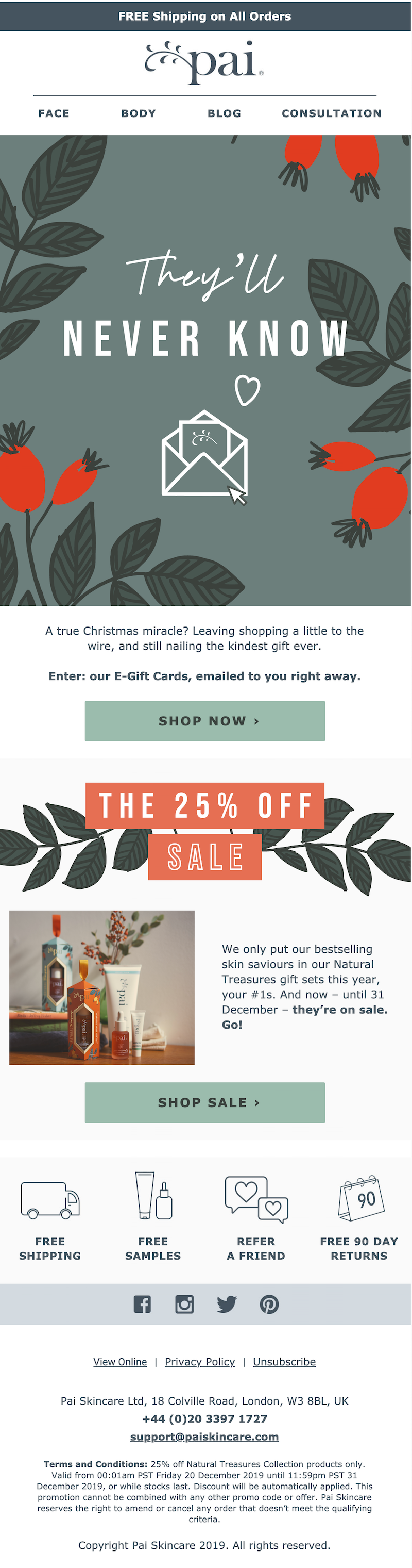Christmas email campaign example